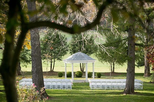 le coeur dans les etoiles - wedding planner - luberon - provence - sardaigne - organisation mariage - ceremonie laique - bois - arbres