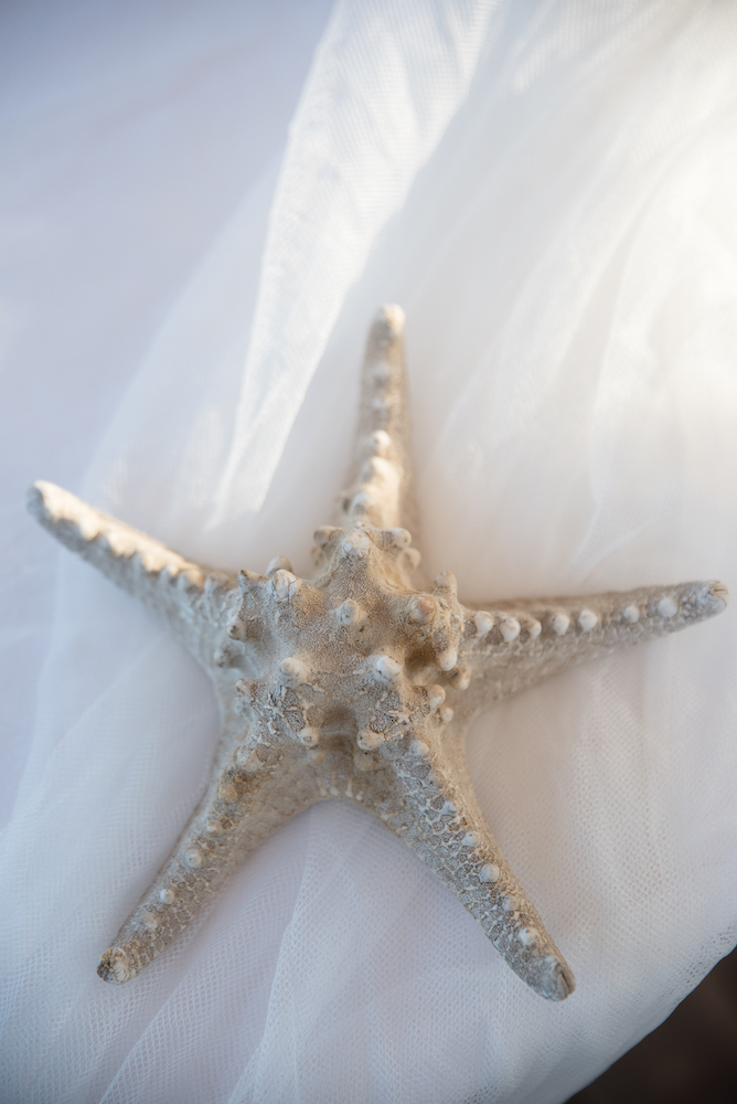 le coeur dans les etoiles - wedding planner - provence - luberon - sardaigne - organisation mariage - tania mura - deco aperitif