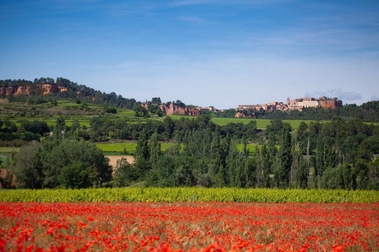 Mariage en Provence, coquelicots