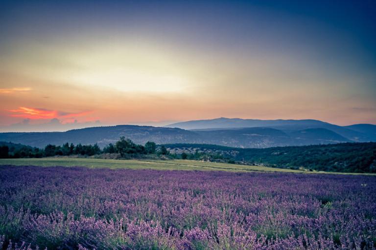Mariage sous les étoiles en Provence