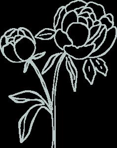 Fleurs mariage Pivoines