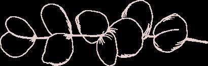 Décoration eucalyptus mariage Sardaigne